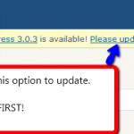 How to update your WordPress in two clicks